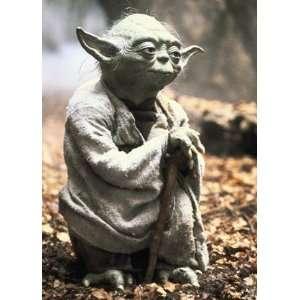 Star Wars Yoda Art Sleeves (50) Toys & Games