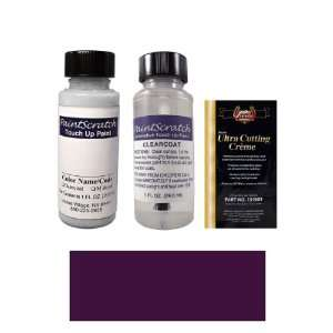 1 Oz. Medium Aubergine Metallic Paint Bottle Kit for 1993