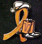 Lupus Orange Glitter Ribbon Cowgirl Cowboy Western Boots Hat Lapel Pin