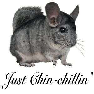 CHINCHILLA CHIN CHILLIN DARK T SHIRT S M L XL XXL XXXL