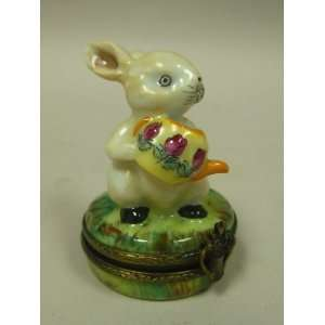 Rochard Rabbit Pill Box Health & Personal Care