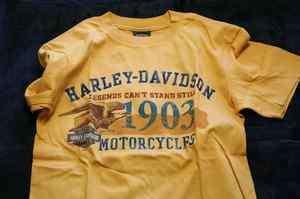 Dublin Harley Davidson Legend Lives T Shirt