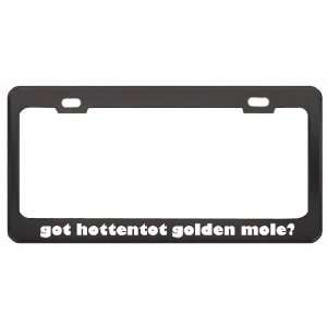 Got Hottentot Golden Mole? Animals Pets Black Metal License Plate