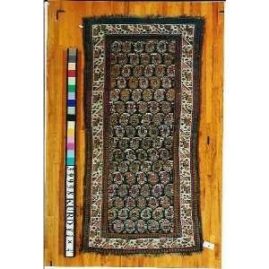 4x8 Hand Knotted Kurd Kurdistan Rug   40x81: Home