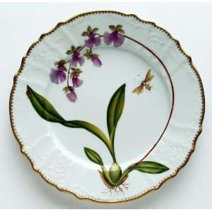 Anna Weatherley Orchid 10.5 In Dinner Plate #6