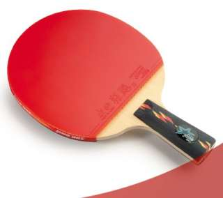 DHS Ping Pong Paddle 2 Balls Set 4 Star Professional