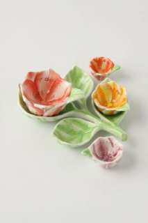 Anthropologie   Plucked Petals Measuring Spoons