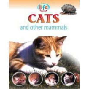 and Other Mammals (Life Cycles) (9781841388632): Sally Morgan: Books