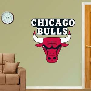 NBA Chicago Bulls Logo Vinyl Wall Graphic Decal Sticker