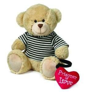 Prisoner of Love Valentines Day Teddy Bear Toys & Games