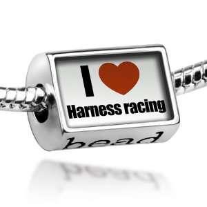 Beads I Love Harness racing   Pandora Charm & Bracelet