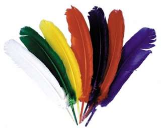 Indian Feathers (Accessories)