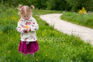 Little blonde girl picking flowers Royalty Free Stock Photo